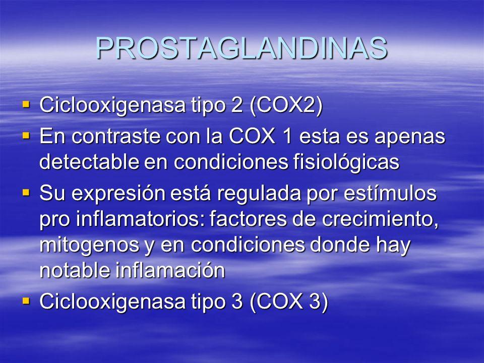 PROSTAGLANDINAS Ciclooxigenasa tipo 2 (COX2) Ciclooxigenasa tipo 2 (COX2) En contraste con la COX 1 esta es apenas detectable en condiciones fisiológi