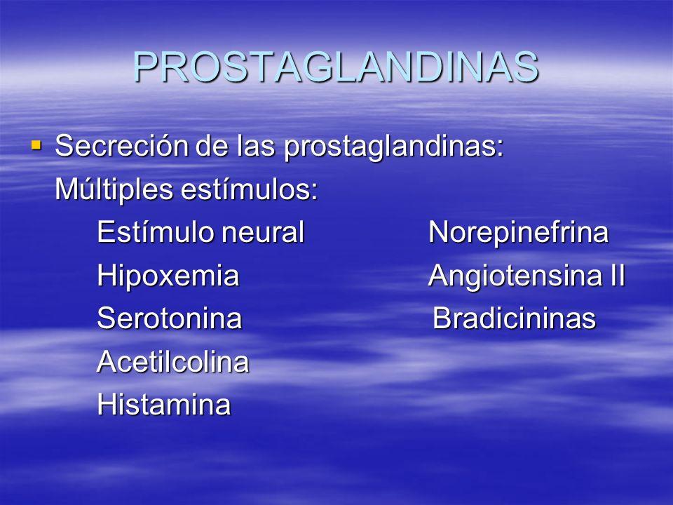 PROSTAGLANDINAS Secreción de las prostaglandinas: Secreción de las prostaglandinas: Múltiples estímulos: Estímulo neural Norepinefrina Hipoxemia Angio