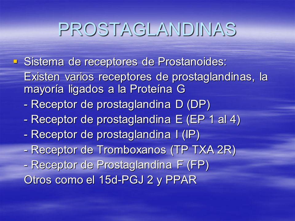 PROSTAGLANDINAS Sistema de receptores de Prostanoides: Sistema de receptores de Prostanoides: Existen varios receptores de prostaglandinas, la mayoría