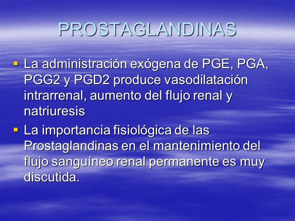 PROSTAGLANDINAS La administración exógena de PGE, PGA, PGG2 y PGD2 produce vasodilatación intrarrenal, aumento del flujo renal y natriuresis La admini