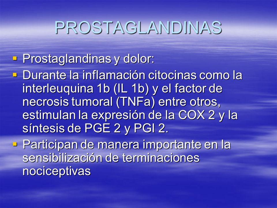 PROSTAGLANDINAS Prostaglandinas y dolor: Prostaglandinas y dolor: Durante la inflamación citocinas como la interleuquina 1b (IL 1b) y el factor de nec
