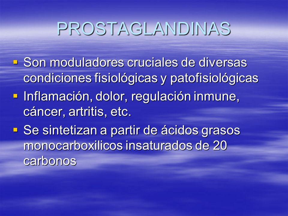 PROSTAGLANDINAS Son moduladores cruciales de diversas condiciones fisiológicas y patofisiológicas Son moduladores cruciales de diversas condiciones fi