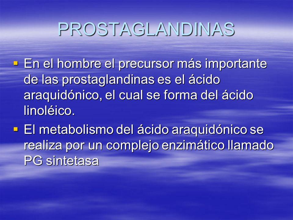 PROSTAGLANDINAS En el hombre el precursor más importante de las prostaglandinas es el ácido araquidónico, el cual se forma del ácido linoléico. En el