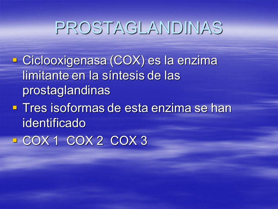 PROSTAGLANDINAS Ciclooxigenasa (COX) es la enzima limitante en la síntesis de las prostaglandinas Ciclooxigenasa (COX) es la enzima limitante en la sí