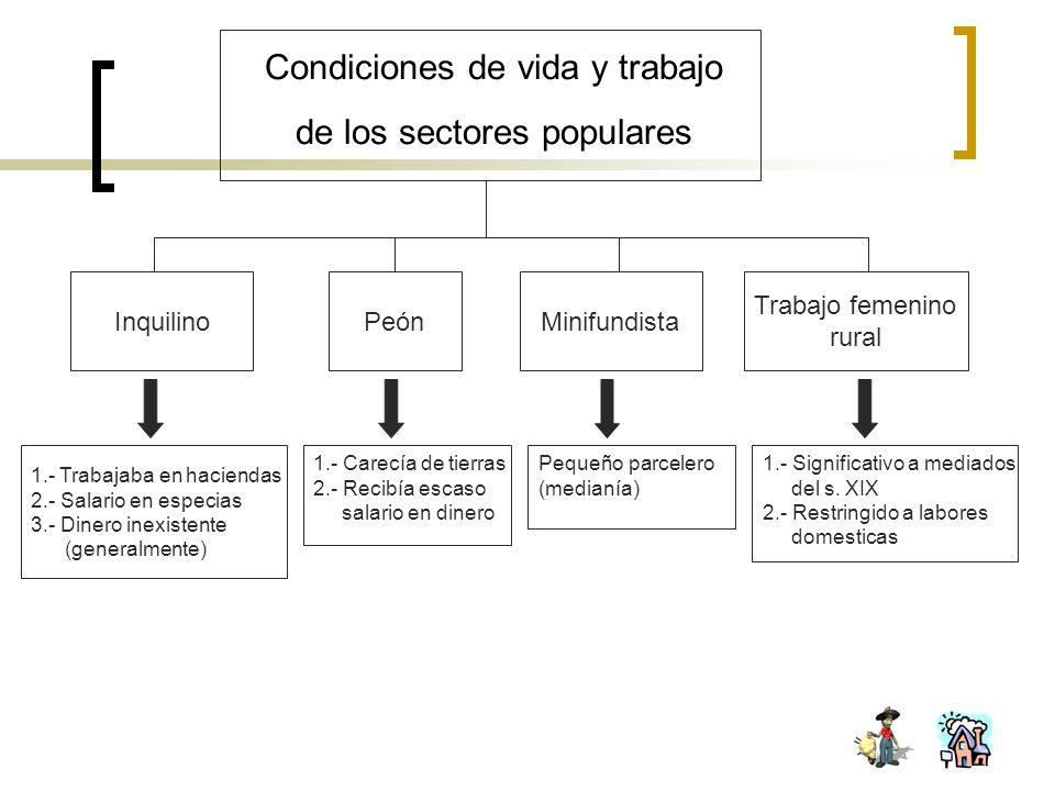 Condiciones de vida y trabajo de los sectores populares InquilinoPeónMinifundista Trabajo femenino rural 1.- Trabajaba en haciendas 2.- Salario en esp