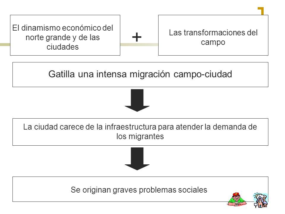 El dinamismo económico del norte grande y de las ciudades Las transformaciones del campo + Gatilla una intensa migración campo-ciudad La ciudad carece