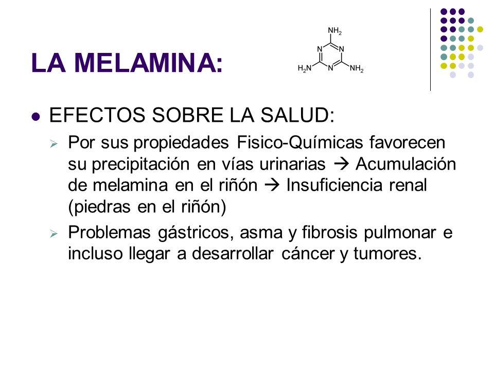 LA MELAMINA: EFECTOS SOBRE LA SALUD: Por sus propiedades Fisico-Químicas favorecen su precipitación en vías urinarias Acumulación de melamina en el ri