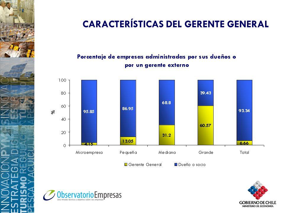 CARACTERÍSTICAS DEL GERENTE GENERAL