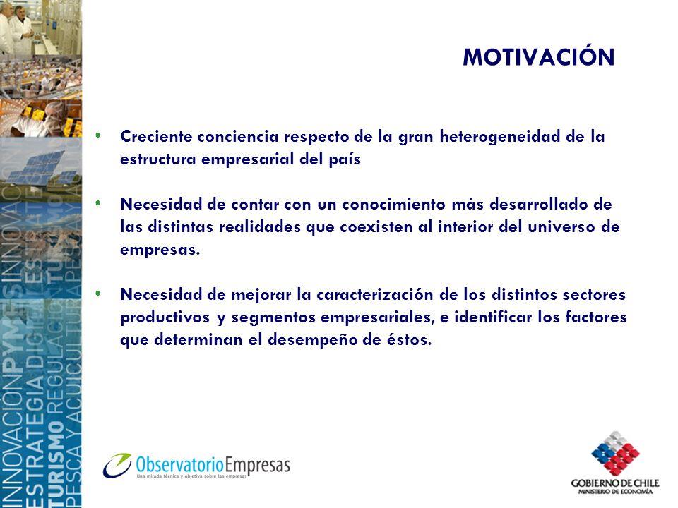 MOTIVACIÓN Creciente conciencia respecto de la gran heterogeneidad de la estructura empresarial del país Necesidad de contar con un conocimiento más d