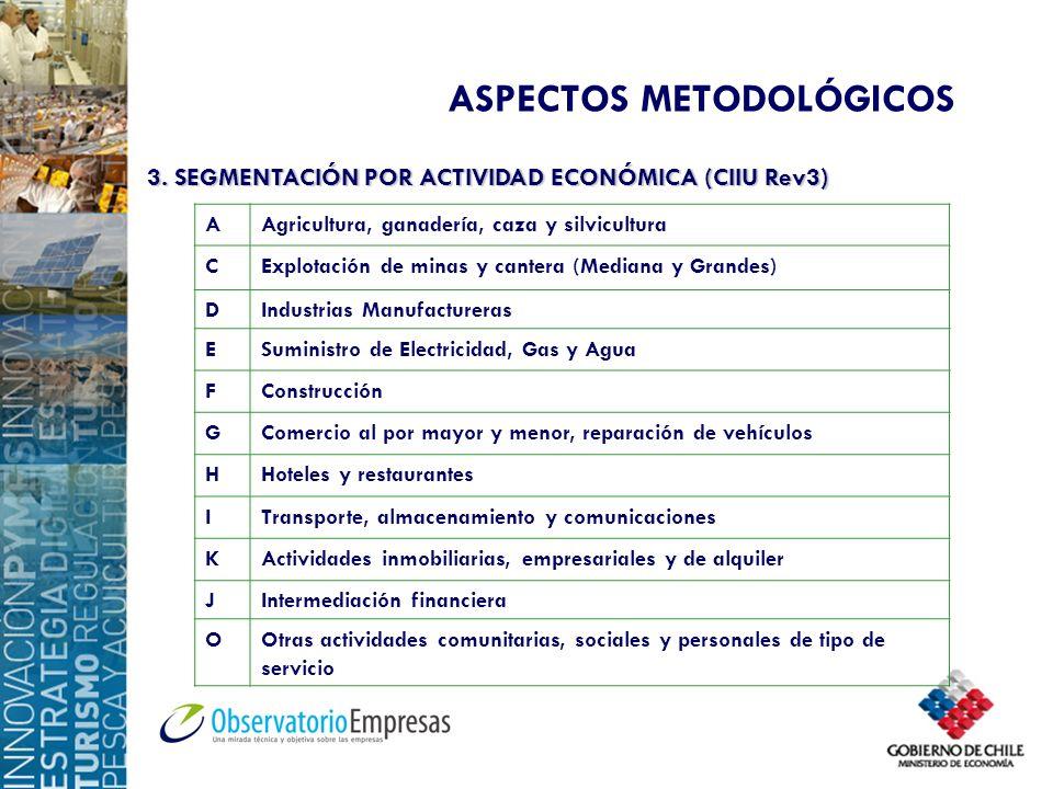 ASPECTOS METODOLÓGICOS 3. SEGMENTACIÓN POR ACTIVIDAD ECONÓMICA (CIIU Rev3) AAgricultura, ganadería, caza y silvicultura CExplotación de minas y canter