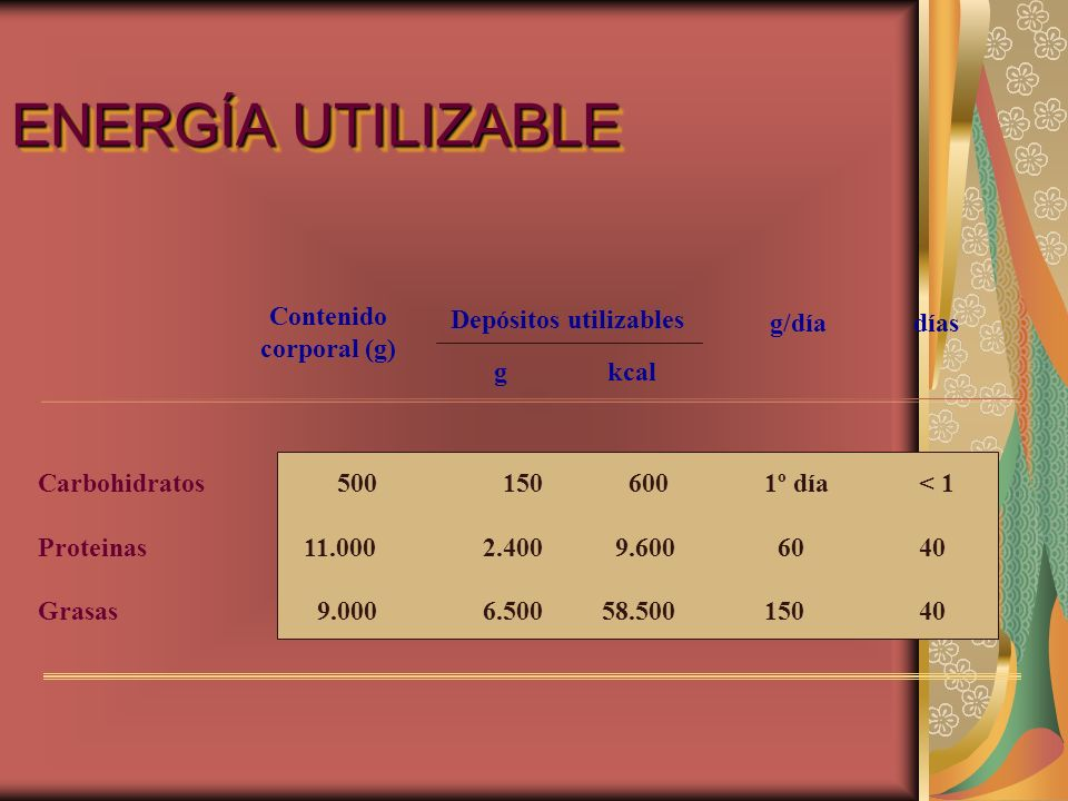 ENERGÍA UTILIZABLE Contenido corporal (g) Depósitos utilizables g/díadías g kcal Carbohidratos Proteinas Grasas 500 11.000 9.000 150 2.400 6.500 600 9