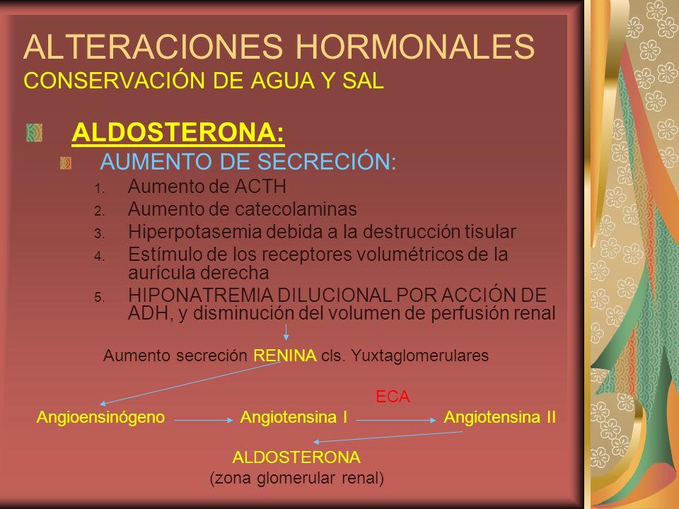 ALTERACIONES HORMONALES CONSERVACIÓN DE AGUA Y SAL ALDOSTERONA: AUMENTO DE SECRECIÓN: 1. Aumento de ACTH 2. Aumento de catecolaminas 3. Hiperpotasemia