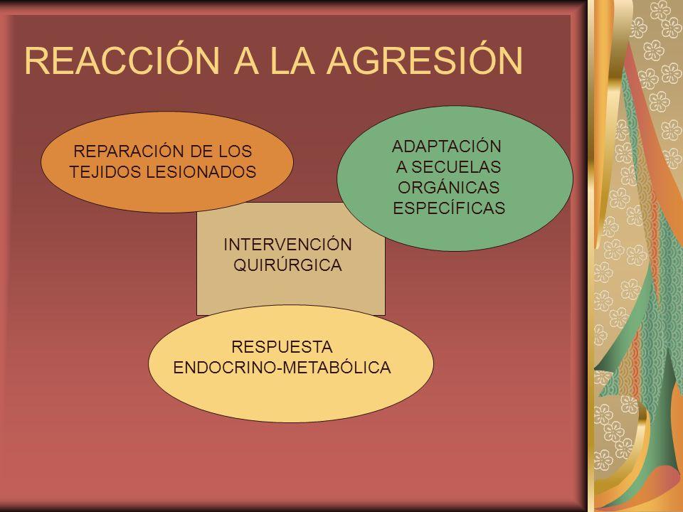 REACCIÓN A LA AGRESIÓN INTERVENCIÓN QUIRÚRGICA REPARACIÓN DE LOS TEJIDOS LESIONADOS ADAPTACIÓN A SECUELAS ORGÁNICAS ESPECÍFICAS RESPUESTA ENDOCRINO-ME