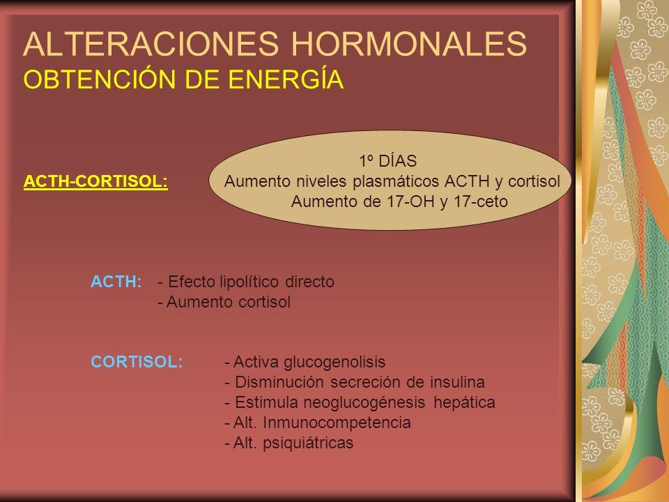 ALTERACIONES HORMONALES OBTENCIÓN DE ENERGÍA 1º DÍAS ACTH-CORTISOL:Aumento niveles plasmáticos ACTH y cortisol Aumento de 17-OH y 17-ceto ACTH:- Efect