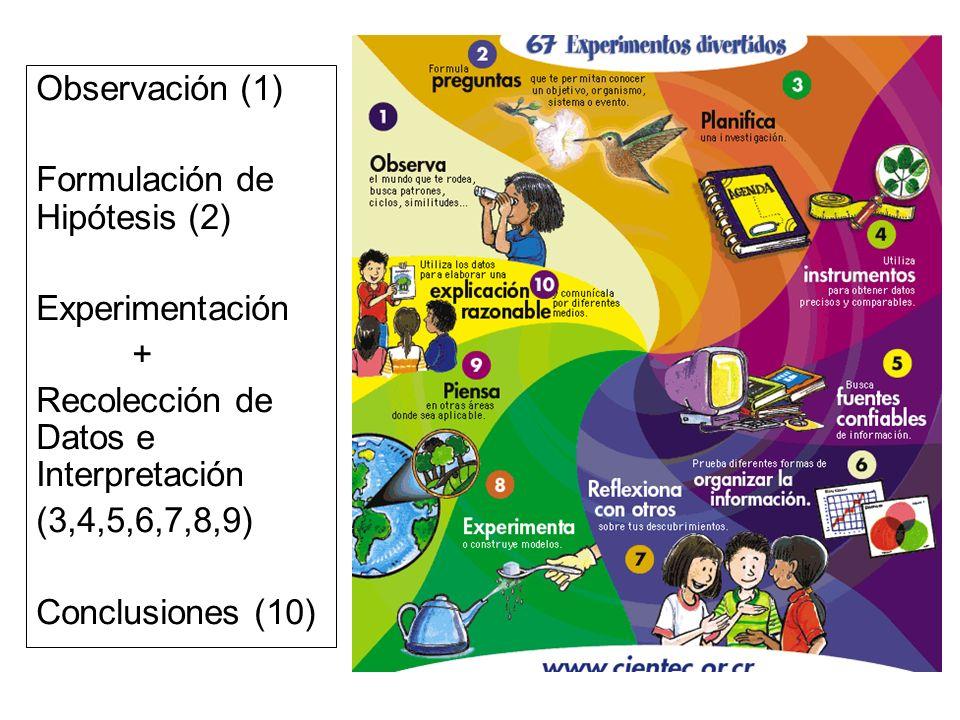 Observación (1) Formulación de Hipótesis (2) Experimentación + Recolección de Datos e Interpretación (3,4,5,6,7,8,9) Conclusiones (10)