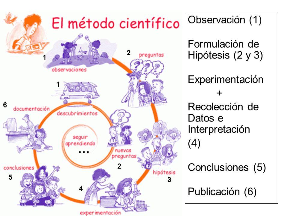 Observación (1) Formulación de Hipótesis (2 y 3) Experimentación + Recolección de Datos e Interpretación (4) Conclusiones (5) Publicación (6) 1 2 3 6