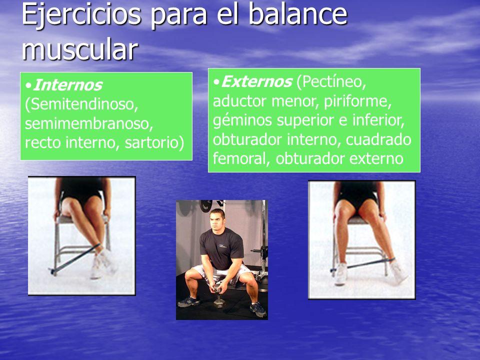 Ejercicios para el balance muscular Externos (Pectíneo, aductor menor, piriforme, géminos superior e inferior, obturador interno, cuadrado femoral, ob