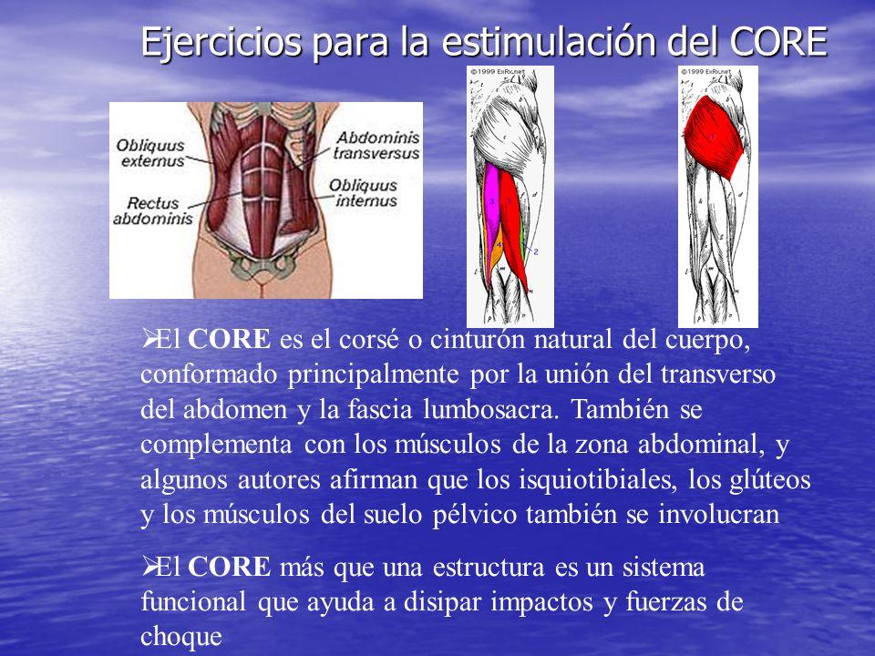 Ejercicios para la estimulación del CORE El CORE es el corsé o cinturón natural del cuerpo, conformado principalmente por la unión del transverso del