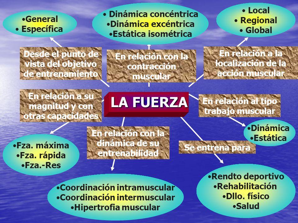 ASPECTOS TÉCNICOS DE LOS PRINCIPALES MEDIOS PARA EL ENTRENAMIENTO DE LA DE FUERZA Medios para la estabilización osteo- artro-muscular Medios para la estabilización osteo- artro-muscular Medios para el desarrollo de la fuerza resistencia Medios para el desarrollo de la fuerza resistencia Medios para el desarrollo muscular y/o la fuerza máxima Medios para el desarrollo muscular y/o la fuerza máxima Ejercicios pliométricos Ejercicios pliométricos Medios específicos adaptados a las diversas disciplinas Medios específicos adaptados a las diversas disciplinas