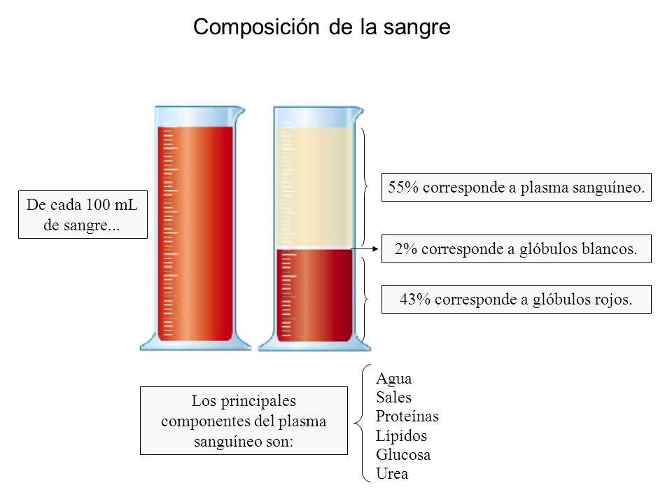 Composición de la sangre De cada 100 mL de sangre...