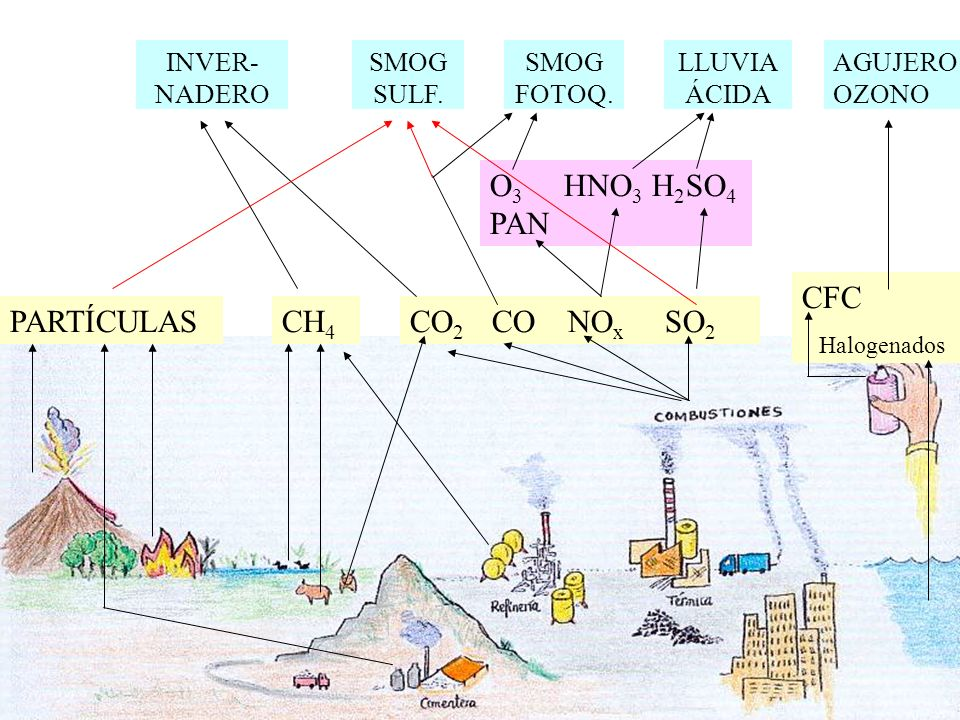 PARTÍCULASCH 4 CO 2 CO NO x SO 2 CFC Halogenados O 3 HNO 3 H 2 SO 4 PAN INVER- NADERO SMOG SULF.
