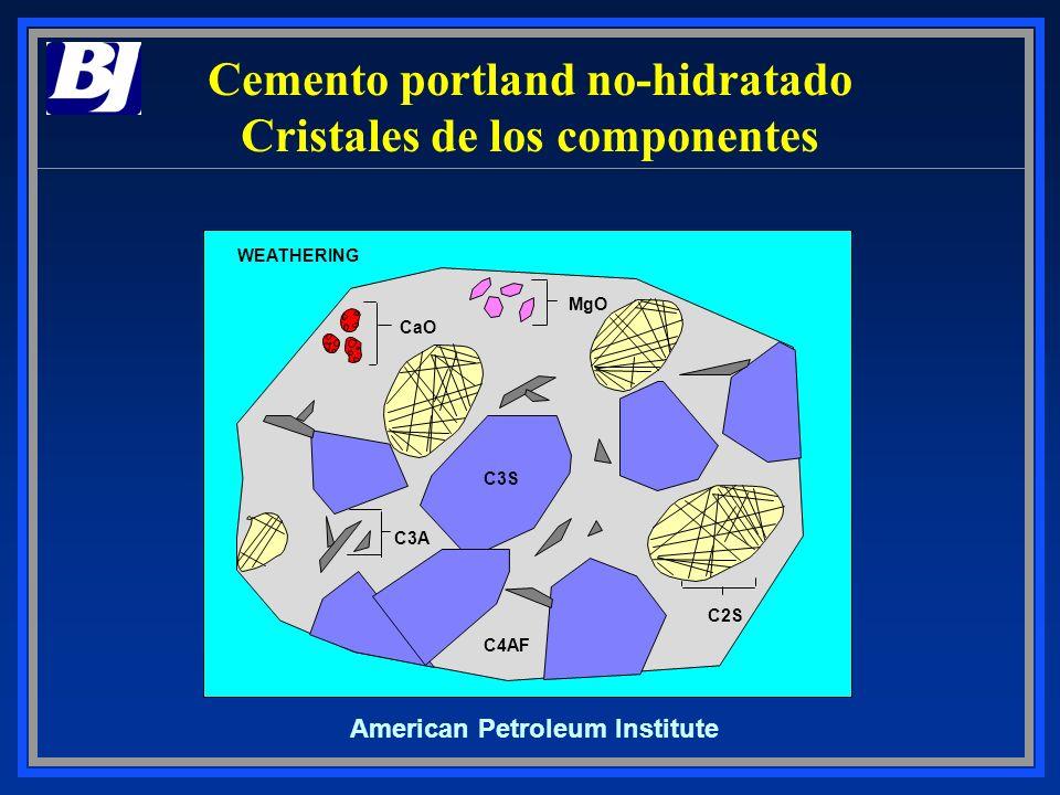 Cemento portland no-hidratado Cristales de los componentes American Petroleum Institute