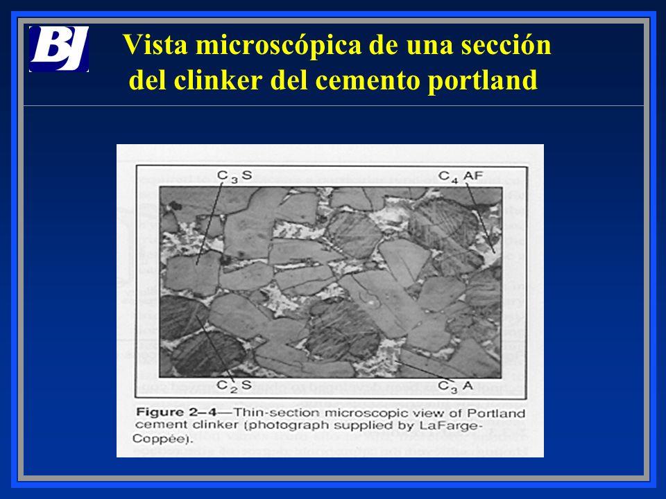 Vista microscópica de una sección del clinker del cemento portland