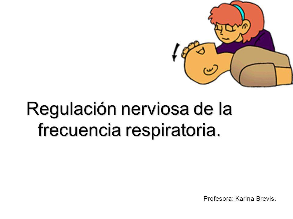 Regulación nerviosa de la frecuencia respiratoria. Profesora: Karina Brevis.