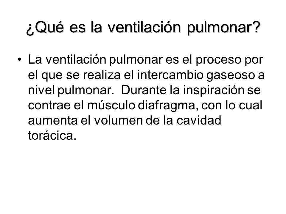 ¿Qué es la ventilación pulmonar? La ventilación pulmonar es el proceso por el que se realiza el intercambio gaseoso a nivel pulmonar. Durante la inspi