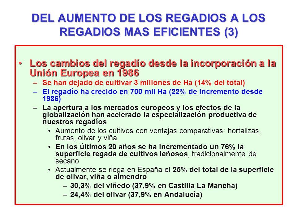 Los cambios del regadío desde la incorporación a la Unión Europea en 1986Los cambios del regadío desde la incorporación a la Unión Europea en 1986 –Se