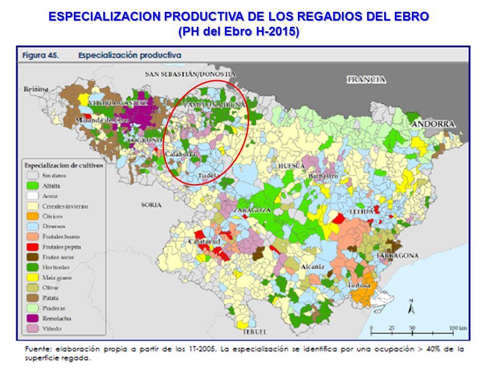 EL REGADIO CONSUME EL 2,37% DE LA ENERGIA ELECTRICA (6900 GWH), QUE REPRESENTAN 2075 KWH/HA (500-2650 KWH/HA) LOS COSTES ENERGETICOS SON DETERMINANTES, ACTUALMENTE, DEL COSTE TOTAL DEL AGUA DE RIEGO Fuente elaboración propia con datos del Inventario y caracterización de regadíos de Andalucía 2008 (CAP)