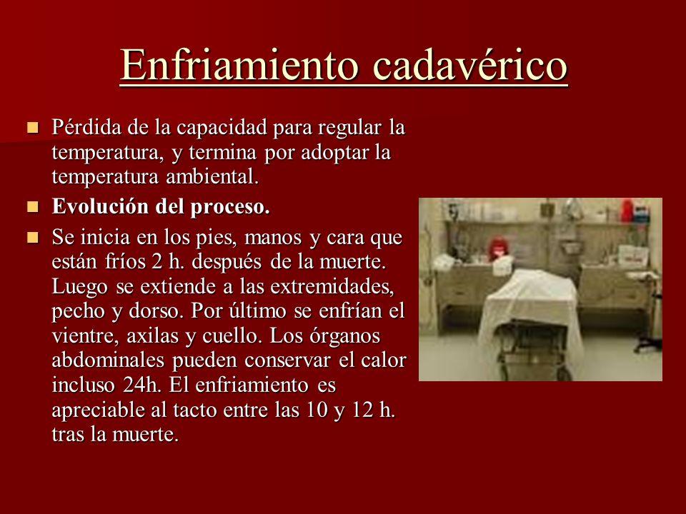 Enfriamiento cadavérico Pérdida de la capacidad para regular la temperatura, y termina por adoptar la temperatura ambiental. Pérdida de la capacidad p