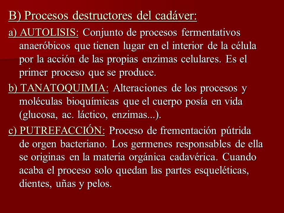 B) Procesos destructores del cadáver: a) AUTOLISIS: Conjunto de procesos fermentativos anaeróbicos que tienen lugar en el interior de la célula por la