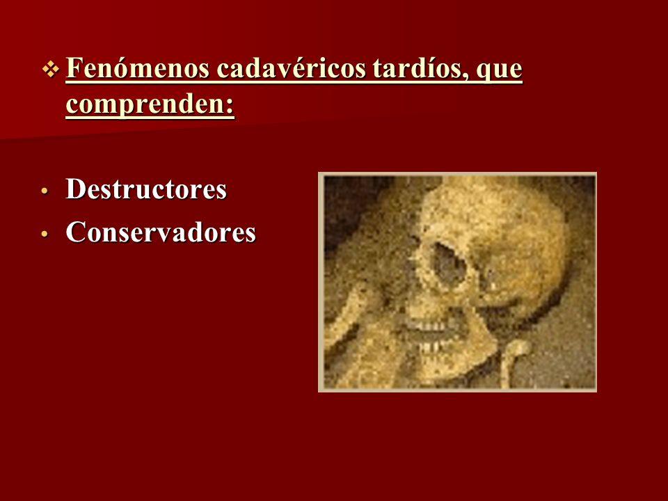 Fenómenos cadavéricos tardíos, que comprenden: Fenómenos cadavéricos tardíos, que comprenden: Destructores Destructores Conservadores Conservadores