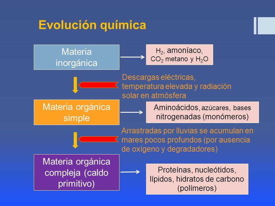 Teoria de Evolucion Quimica Evolución Química