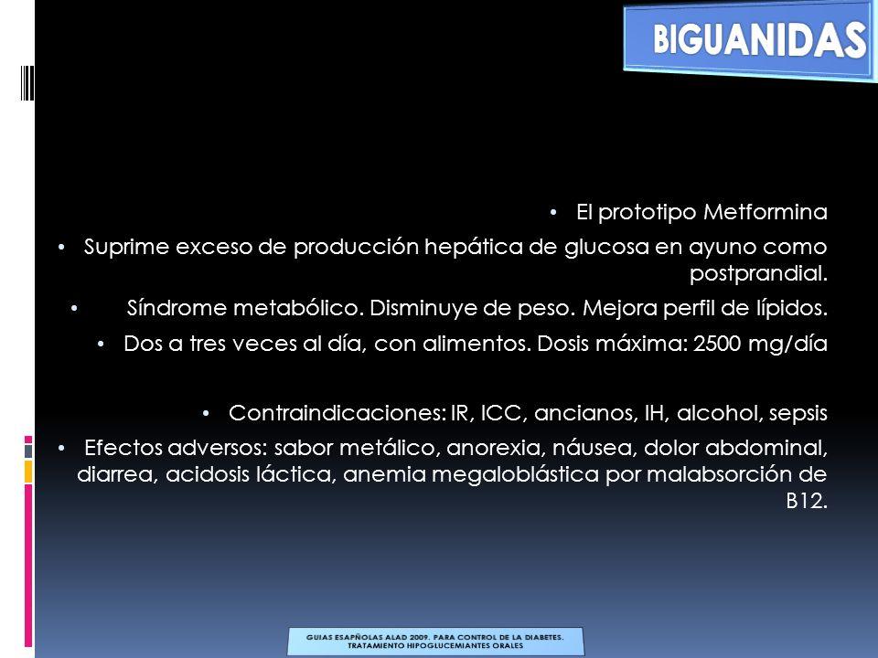 El prototipo Metformina Suprime exceso de producción hepática de glucosa en ayuno como postprandial. Síndrome metabólico. Disminuye de peso. Mejora pe