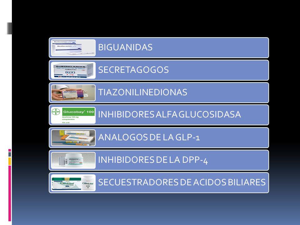BIGUANIDAS SECRETAGOGOS TIAZONILINEDIONAS INHIBIDORES ALFA GLUCOSIDASA ANALOGOS DE LA GLP-1 INHIBIDORES DE LA DPP-4 SECUESTRADORES DE ACIDOS BILIARES