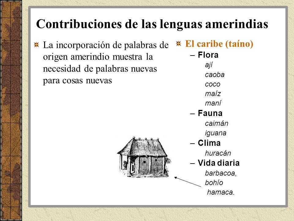 Contribuciones de las lenguas amerindias La incorporación de palabras de origen amerindio muestra la necesidad de palabras nuevas para cosas nuevas El
