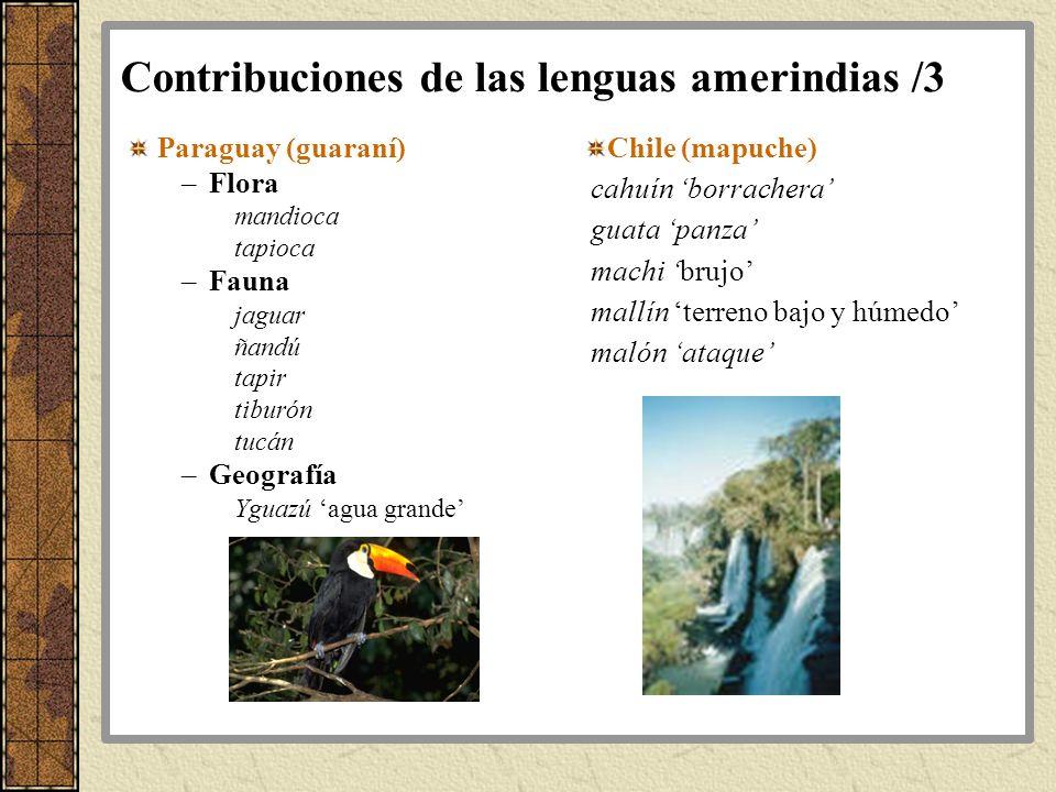 Contribuciones de las lenguas amerindias /3 Paraguay (guaraní) –Flora mandioca tapioca –Fauna jaguar ñandú tapir tiburón tucán –Geografía Yguazú agua