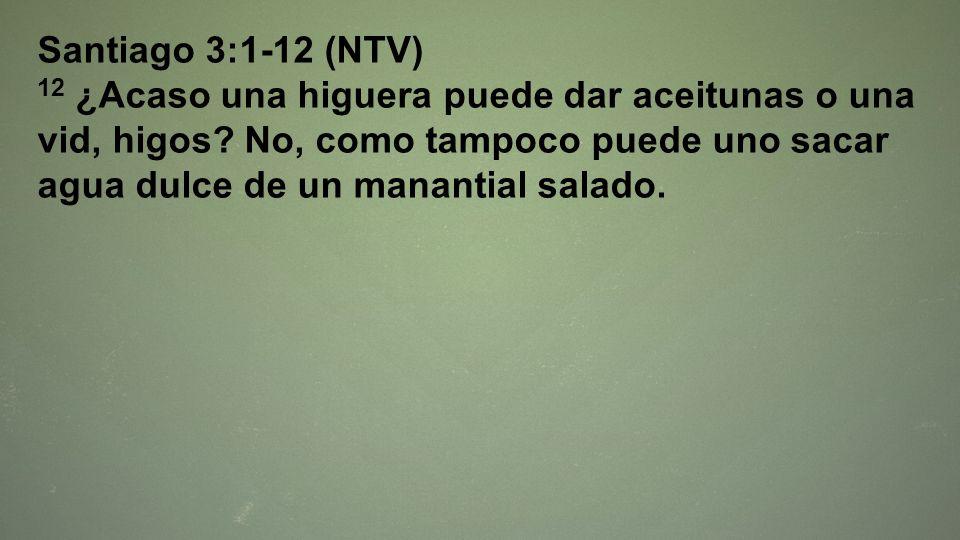 Santiago 3:1-12 (NTV) 12 ¿Acaso una higuera puede dar aceitunas o una vid, higos? No, como tampoco puede uno sacar agua dulce de un manantial salado.