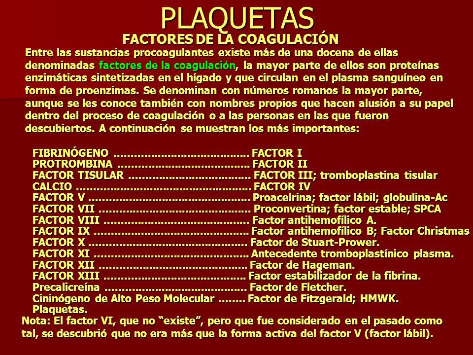 PLAQUETAS FACTORES DE LA COAGULACIÓN Entre las sustancias procoagulantes existe más de una docena de ellas denominadas factores de la coagulación, la