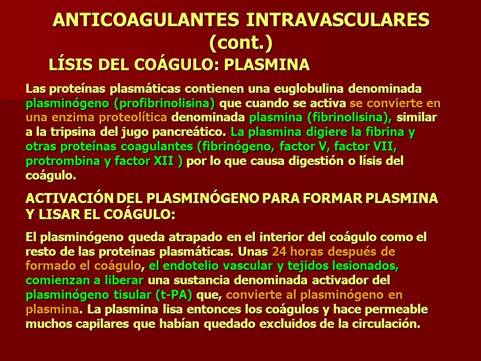 ANTICOAGULANTES INTRAVASCULARES (cont.) LÍSIS DEL COÁGULO: PLASMINA Las proteínas plasmáticas contienen una euglobulina denominada plasminógeno (profi