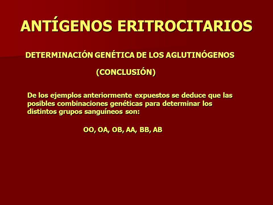 ANTÍGENOS ERITROCITARIOS DETERMINACIÓN GENÉTICA DE LOS AGLUTINÓGENOS (CONCLUSIÓN) De los ejemplos anteriormente expuestos se deduce que las posibles c