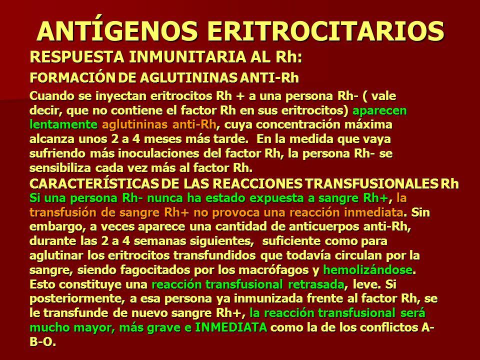 ANTÍGENOS ERITROCITARIOS RESPUESTA INMUNITARIA AL Rh: FORMACIÓN DE AGLUTININAS ANTI-Rh Cuando se inyectan eritrocitos Rh + a una persona Rh- ( vale de
