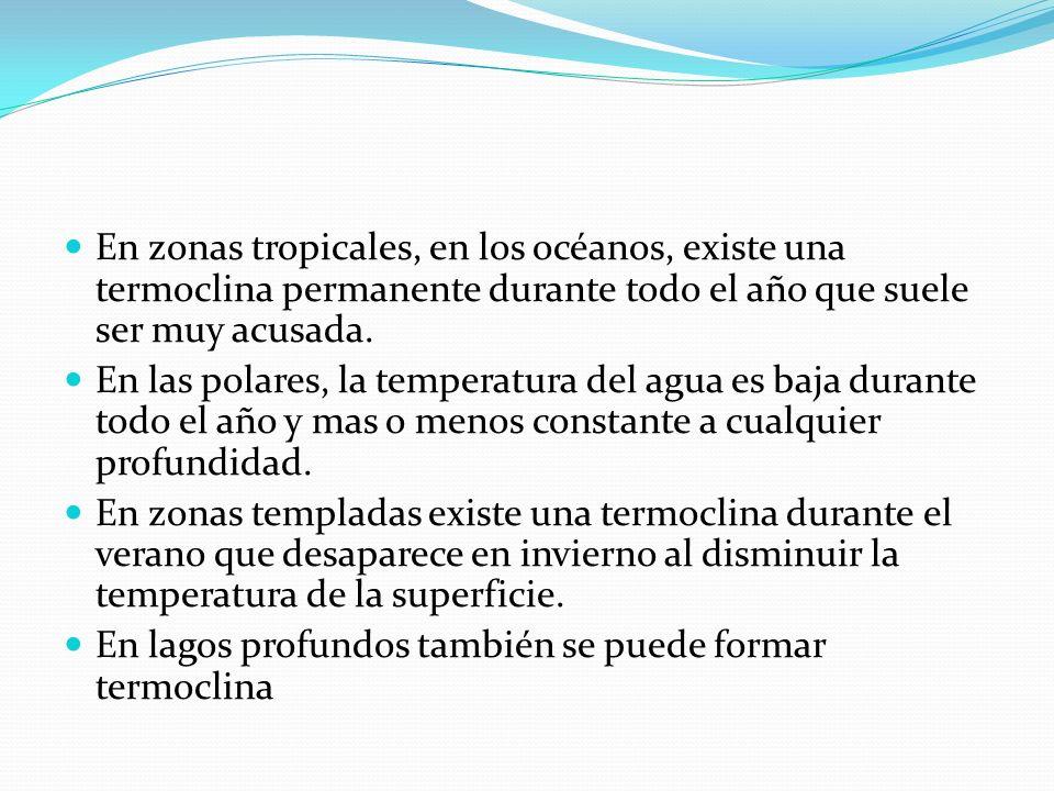 En zonas tropicales, en los océanos, existe una termoclina permanente durante todo el año que suele ser muy acusada. En las polares, la temperatura de