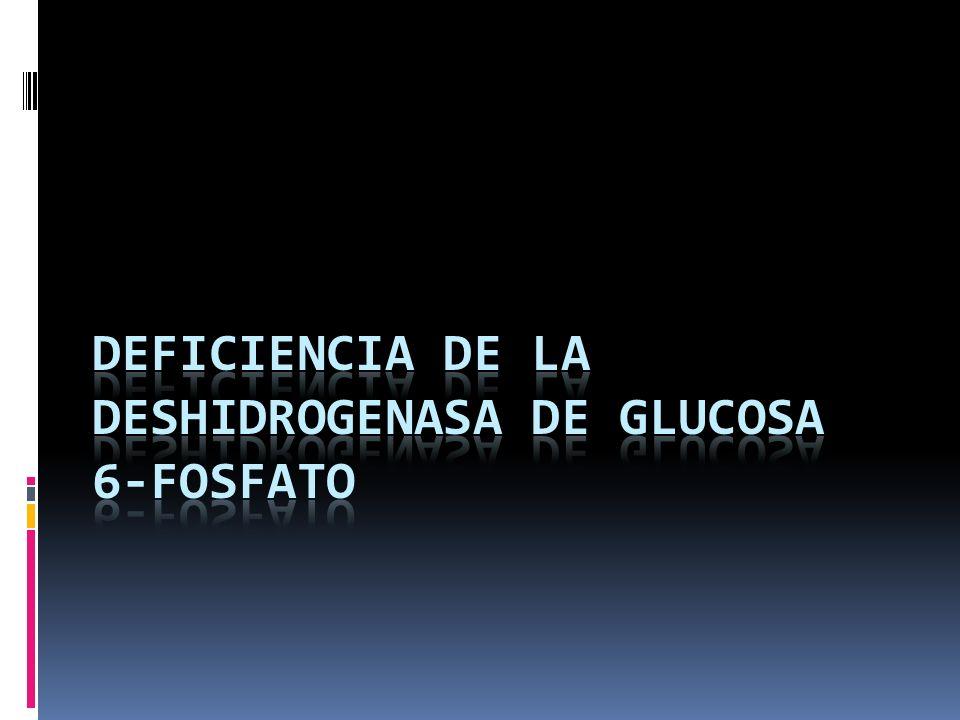 Ciclo de Rapoport – Luebering 2,3 – difosfoglicerato (DPG) el cual facilita la liberación de oxigeno a los tejidos.