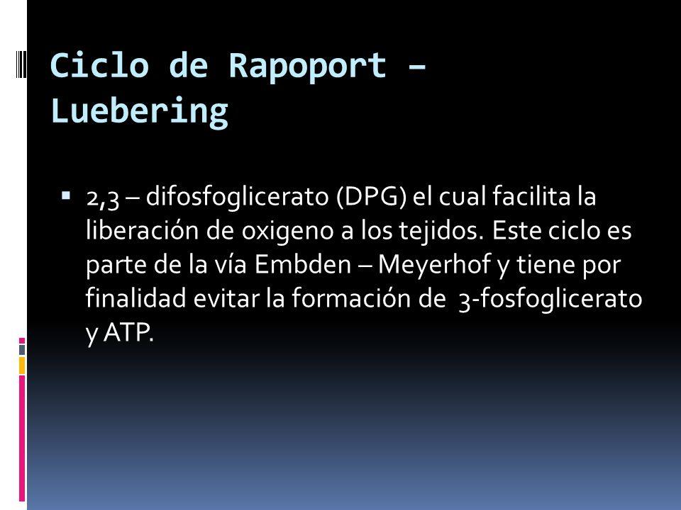 Ciclo de Rapoport – Luebering 2,3 – difosfoglicerato (DPG) el cual facilita la liberación de oxigeno a los tejidos. Este ciclo es parte de la vía Embd