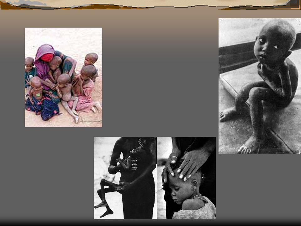 640 millones de niños y niñas,uno de cada tres en los países en desarrollo, viven sin una vivienda adecuada.