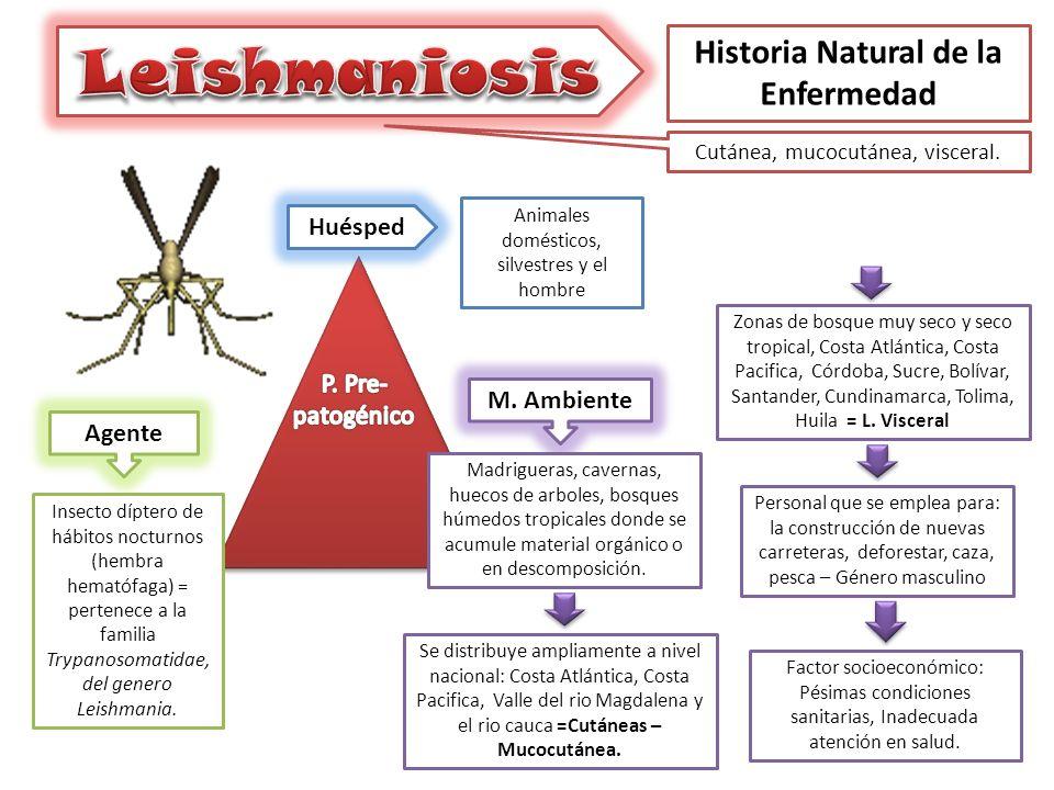 Historia Natural de la Enfermedad Cutánea, mucocutánea, visceral.