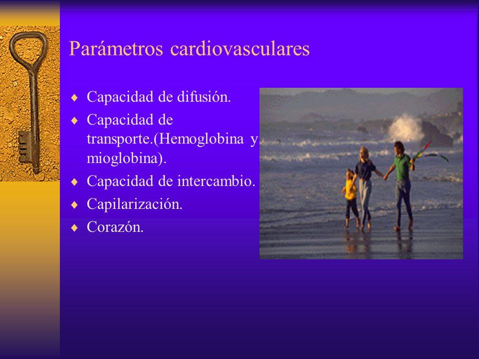 RESERVAS DE ENERGIA ATP------ADP + P +ENERGÍA FC + ADP---Creatina + ATP HC y L VAA VAAN H2O + CO2 + ATPVA